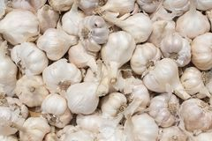 Белая текстура кучи чеснока Свежий чеснок на фото крупного плана таблицы рынка Стоковое Фото