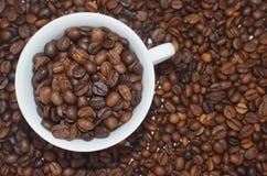 Белая чашка полная кофейных зерен на предпосылке фасолей coffe Стоковое Фото