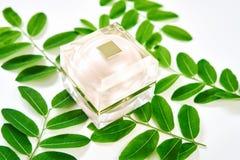 Белая cream помещенная бутылка, пустой пакет ярлыка для насмешки вверх на зеленой предпосылке листвы Стоковые Изображения RF