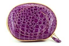 белизна бумажника сумки предпосылки Стоковое Изображение RF