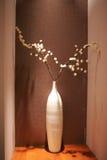 белизна вазы Стоковые Изображения RF
