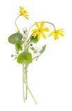 белизна весны букета изолированная цветками Стоковые Изображения