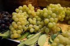 белизна виноградины группы Стоковая Фотография RF