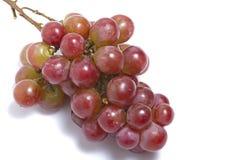 белизна виноградины предпосылки стоковая фотография