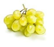 белизна виноградины пука Стоковые Фото