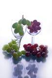белизна виноградин красная Стоковые Изображения RF