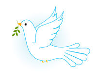 белизна вихруна dove Стоковые Изображения RF