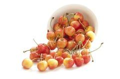 белизна вишни шара сладостная Стоковые Изображения RF