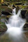 белизна водопада Стоковое Изображение