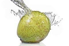 белизна воды выплеска кокоса свежая изолированная Стоковая Фотография