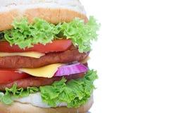белизна гамбургера Стоковые Изображения RF