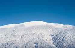 белизна голубого горизонта просто Стоковое Изображение RF