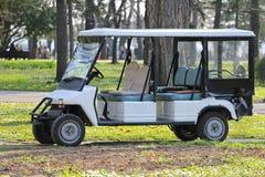 белизна гольфа автомобиля предпосылки классицистическая цветастая Стоковые Изображения RF