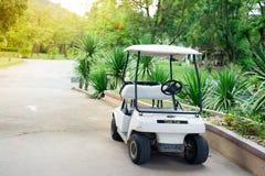 белизна гольфа автомобиля предпосылки классицистическая цветастая Стоковая Фотография RF