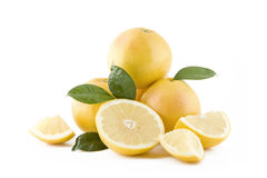белизна грейпфрутов сочная Стоковая Фотография
