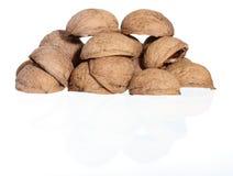 белизна грецкого ореха ореховыйых скорлуп s холма предпосылки Стоковые Фото