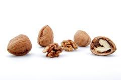 белизна громоздк предпосылки nuts Стоковая Фотография RF