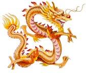 белизна дракона золотистая изолированная Стоковое Фото