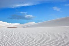 белизна дюны стоковые фотографии rf