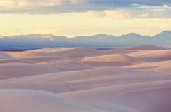 белизна Египета Сахары пустыни западная Стоковые Изображения RF