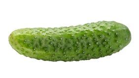белизна еды огурца предпосылки свежая зеленая изолированная вегетарианская Путь клиппирования Стоковое Изображение RF