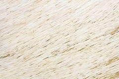 белизна животных волос Стоковые Изображения RF