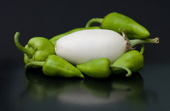 белизна завода перца яичка Стоковое Изображение