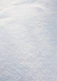 белизна заморозка Стоковое Изображение RF