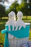 Белизна заполнила зайчика игрушки сидя на траве Стоковые Изображения RF