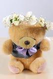 белизна игрушечного медведя милая изолированная Стоковые Изображения