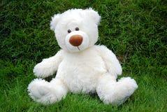 белизна игрушечного медведя Стоковое Изображение RF