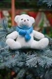 белизна игрушечного медведя Стоковая Фотография RF