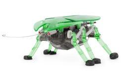 белизна игрушки робота cyber жука предпосылки Стоковые Фотографии RF