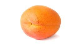 белизна изолированная абрикосом Стоковое Изображение RF