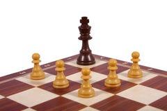 белизна изолированная шахмат Стоковые Изображения RF