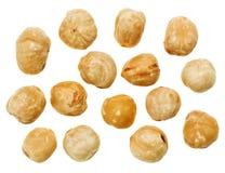 белизна изолированная hazel nuts unshelled стоковые изображения