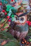 белизна изоляции декора рождества Сыч орла сидя на ветвях стоковые изображения