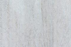 Белизна и помытая серым цветом планка лесов Стоковые Фотографии RF