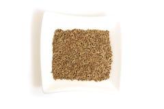 белизна квадрата семян укропа шара Стоковое Изображение RF
