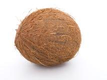 белизна кокоса предпосылки стоковые фото