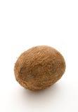белизна кокоса Стоковое Изображение