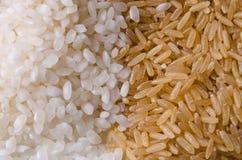 белизна коричневого риса Стоковое Изображение