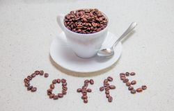 белизна кофейной чашки фасолей Разбросанные кофейные зерна стоковое фото rf