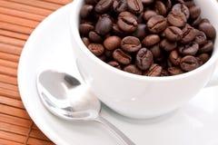 белизна кофейной чашки фасолей Стоковые Фото