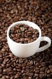 белизна кофейной чашки фасоли Стоковые Изображения