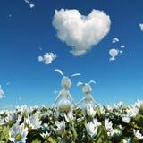 белизна кролика 2 цветка поля иллюстрация штока