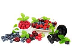 белизна лета ягод предпосылки Стоковые Фотографии RF
