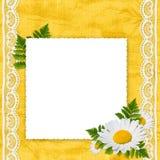 белизна листьев рамки стоцвета Стоковое Изображение