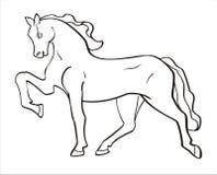 белизна лошади иллюстрация вектора