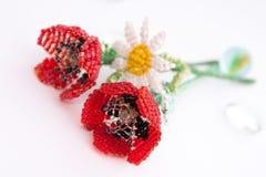 белизна мака стоцвета предпосылки красная Стоковые Изображения